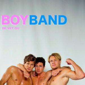 De vet du Boy Band